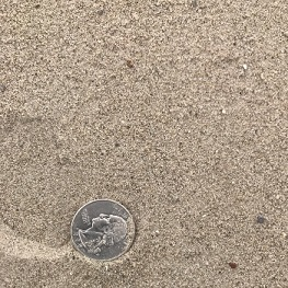 Picture of Beach Sand