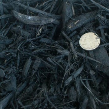 Image of Black Mulch