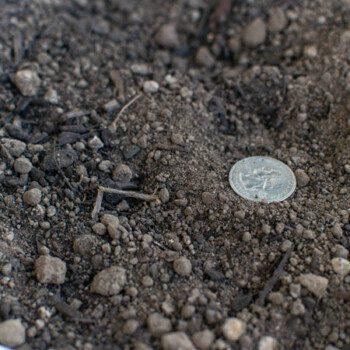 Image of Garden Blend Top Soil